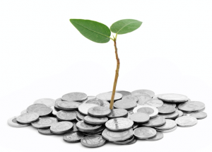 Pflanze auf Münzen